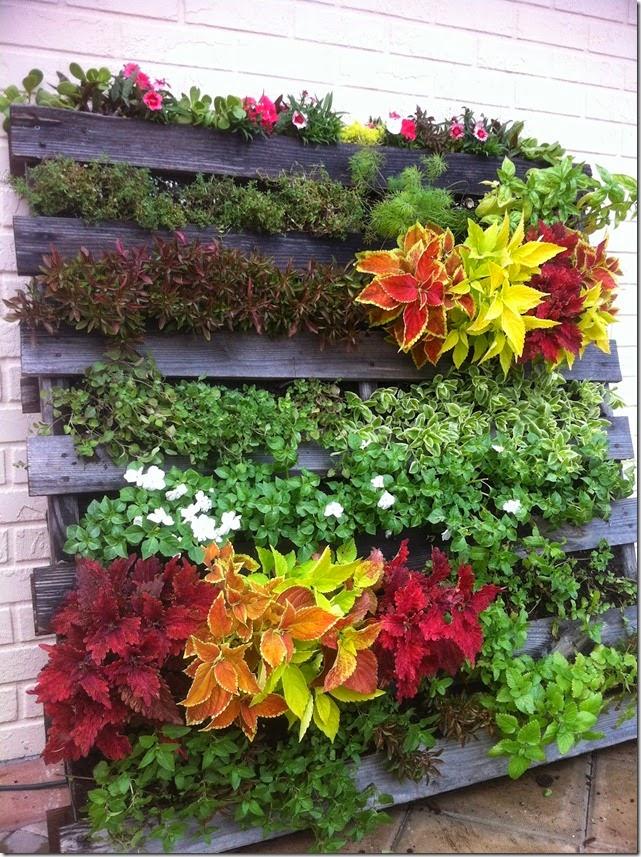 Jardines verticales baratos Jardines verticales y cubiertas vegetales
