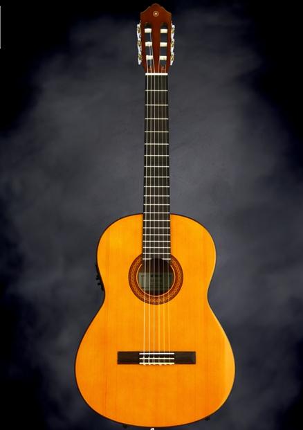harga gitar klasik yamaha CGX102