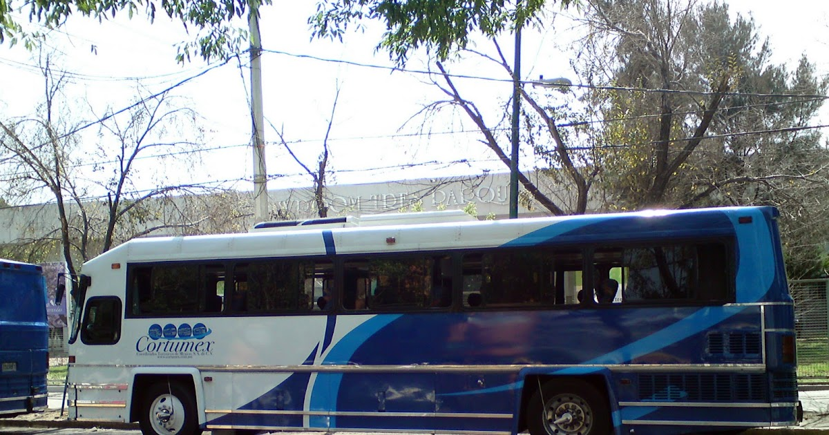 Autobuses de dina fotografias 17