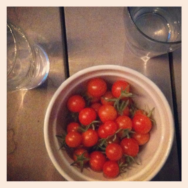 cherry tomatoes fresh off the vine