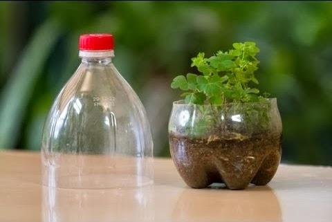C mo hacer un mini invernadero en una botella de plastico - Invernadero casero terraza ...