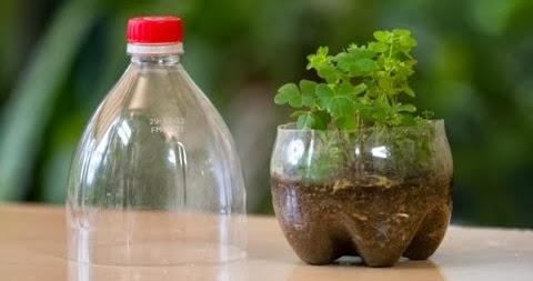 C mo hacer un mini invernadero en una botella de plastico - Plastico inyectado casero ...