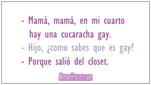 cucarcha es gay por que salio del closet