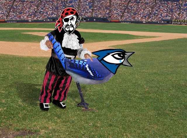 Pirate raping Blue Jay