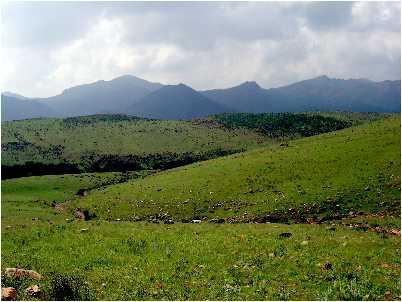 Peisaj din Socotra