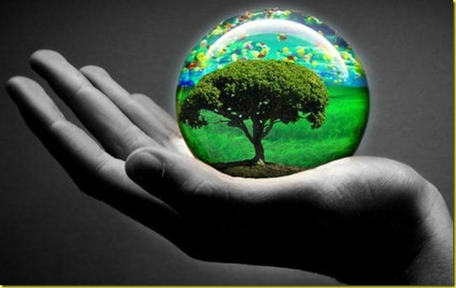 Acrostico Del Dia Del Ambiente | MEJOR CONJUNTO DE FRASES
