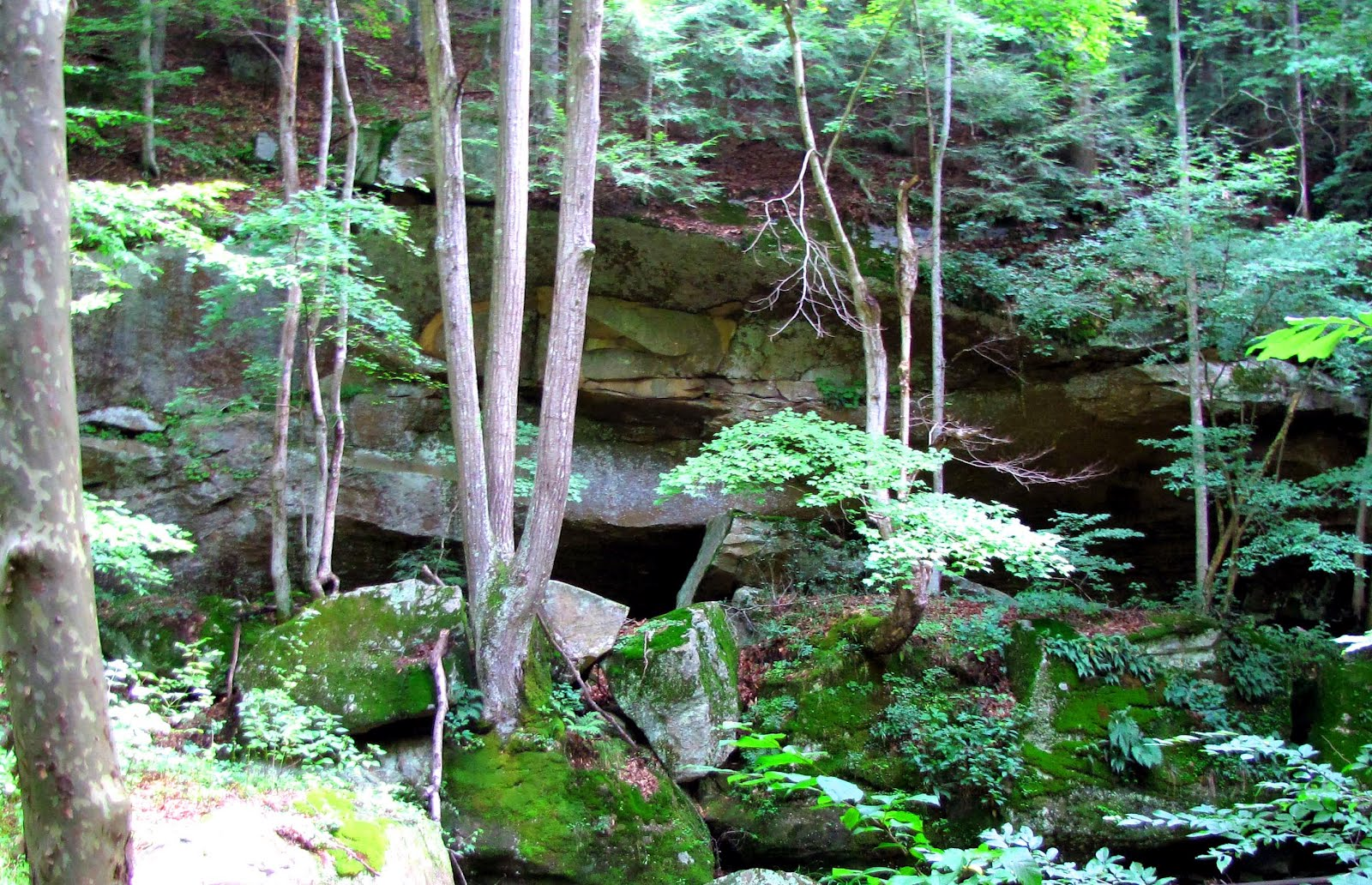 I Call This Place The U201cBear Caveu0027 Because If We Had Any Bears Iu0027m Sure This  Is Where They Would Want To Live. It Is A Rock Overhang That Has A Depth ...