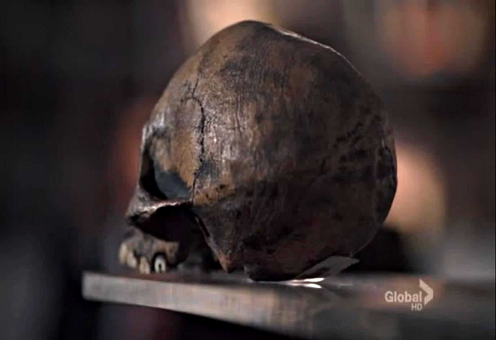 El Neandertal tonto ¡qué timo!: Quiz: ¿Humano moderno, Neandertal o ...