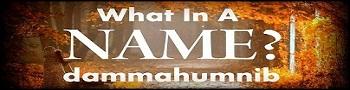 BinMuhammad blog