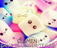 Segmen : Saya Blogger Tegar by Ina