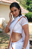 honey rose hot wet saree exposing photos stills images pics gallery