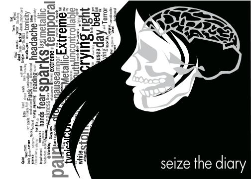 seizure diary template - seize the diary