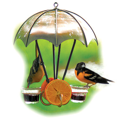 How to build a DIY Oriole Feeder - BirdHouseSupply.com