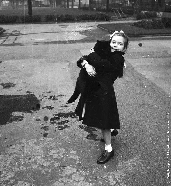 Девочка с любимой кошки. (21 декабря 1953 г.)