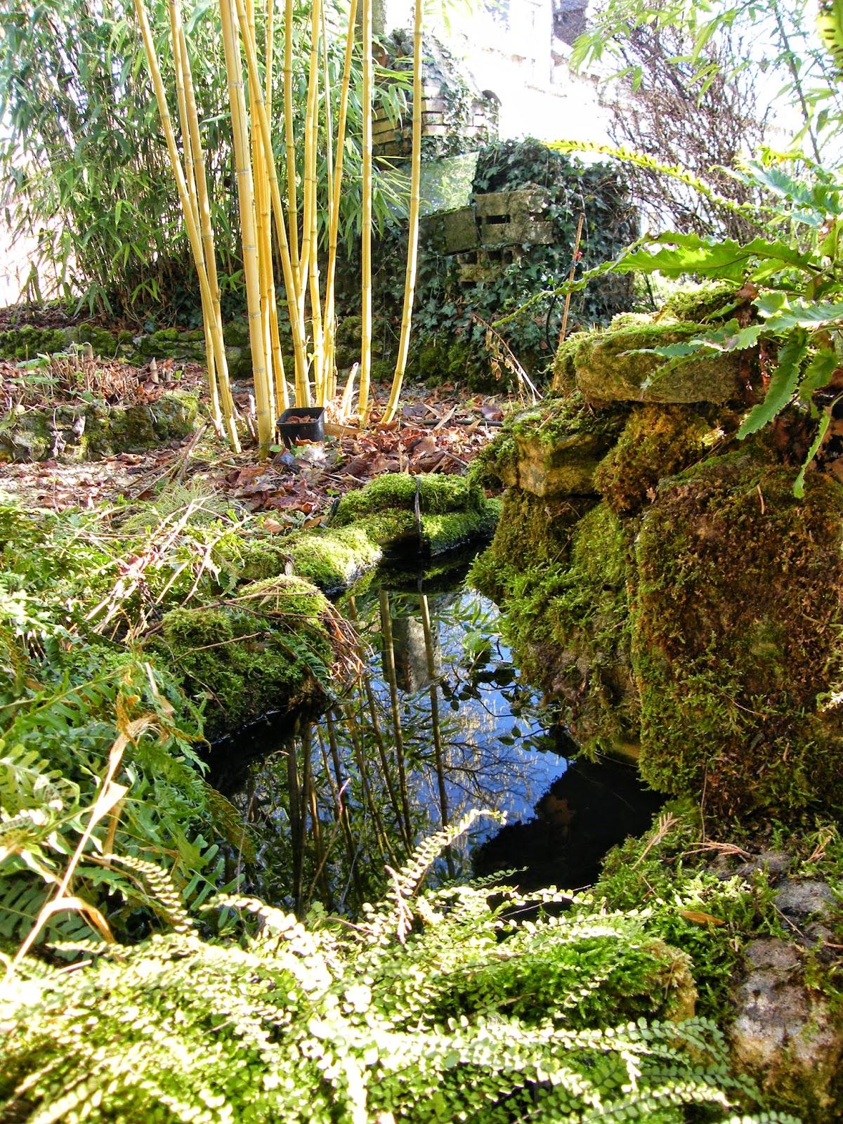Au gr du jardin coup de pompe for Petit jardin japonisant