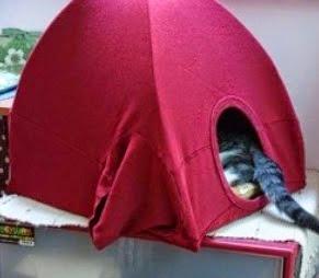 http://translate.google.es/translate?hl=es&sl=en&tl=es&u=http%3A%2F%2Fwww.fabartdiy.com%2Fhow-to-make-simple-cat-tent-in-3-steps%2F