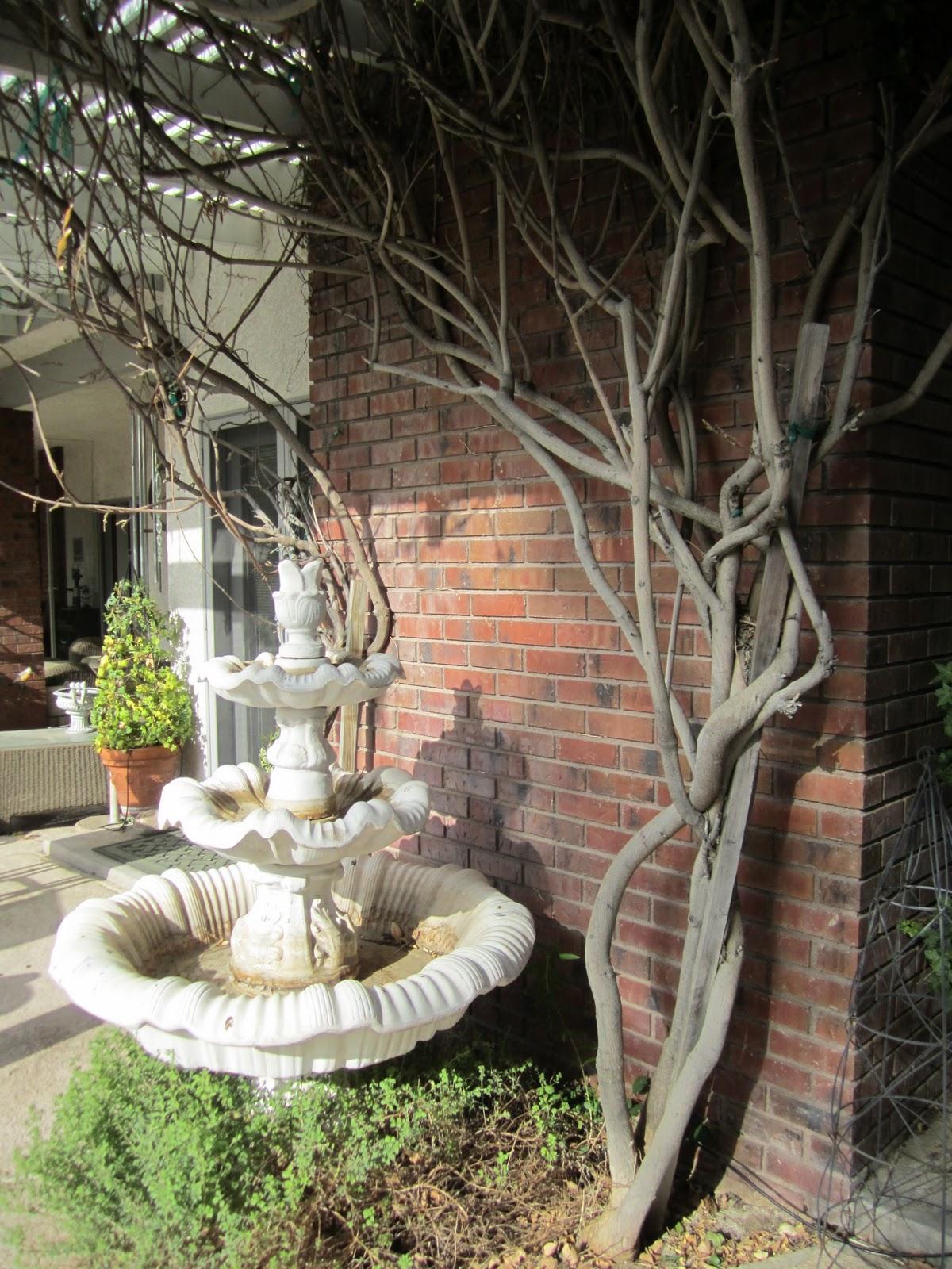 wisteria garden wendys hat