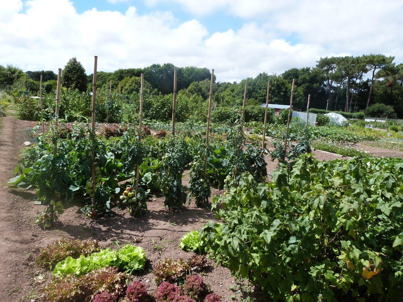 Les jardins familiaux de feunteun don les jardins for Jardin familiaux
