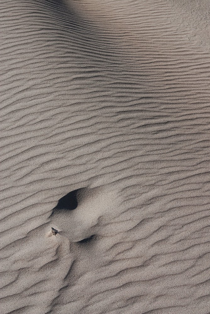 hole in sand