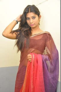 Madhu Waliya  Saree Stills At Love Junction Platinum Disc Function  0006