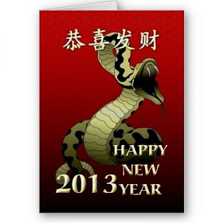 _facts_about_chinese_new_year_snake_2013_chinese_new_year_2013_year ...