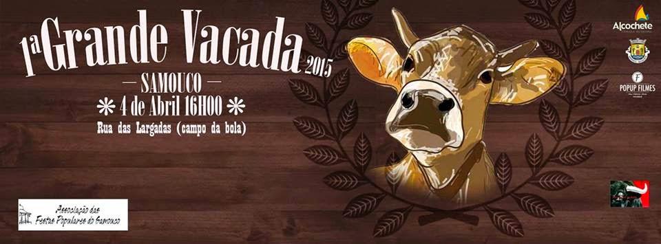 SAMOUCO (Alcochete): 1ª Grandiosa VACADA 2015: