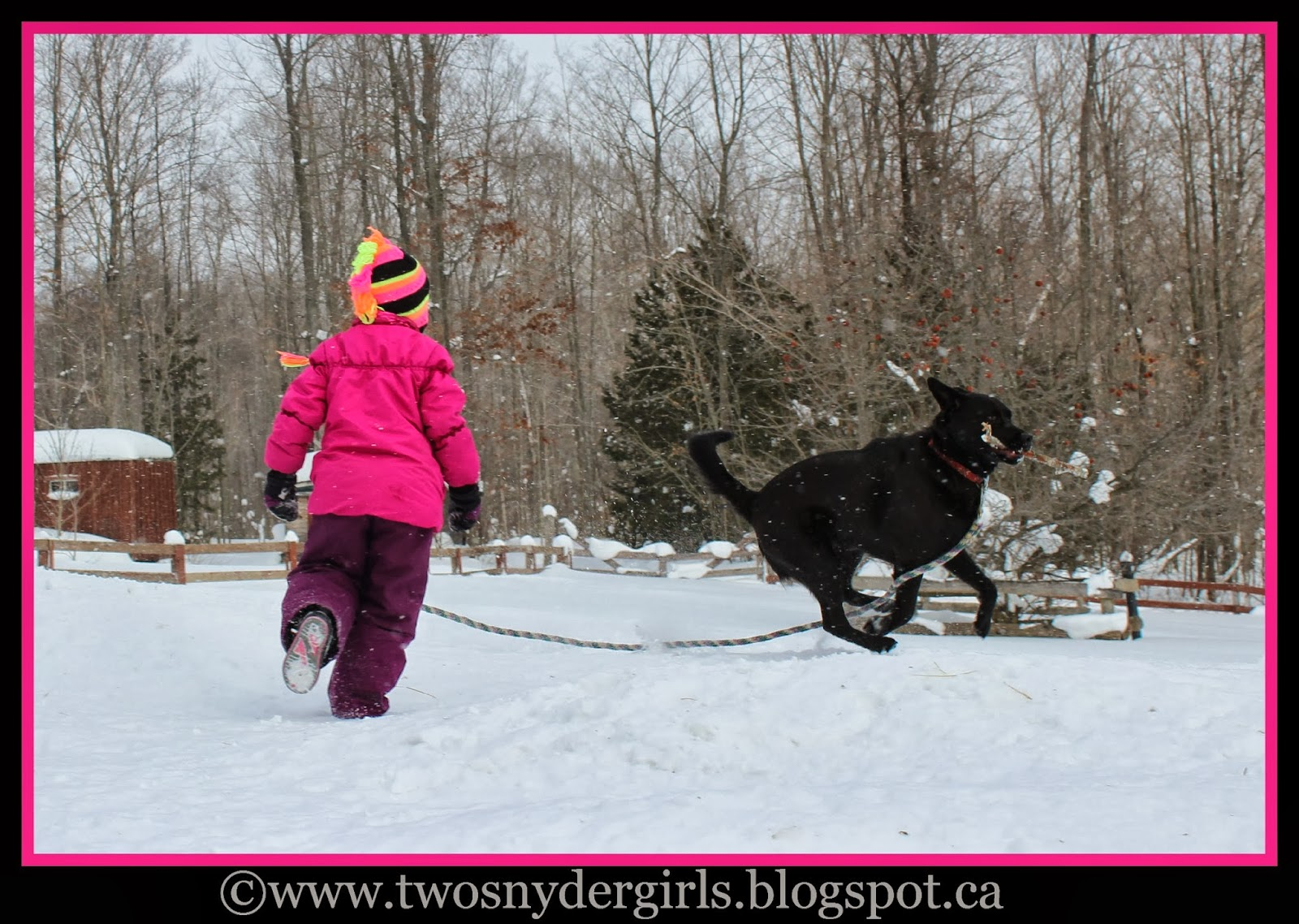 Child play with dog in snow