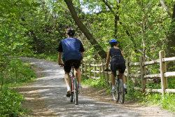 two people biking on a trail