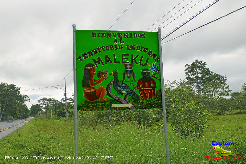 Palenque margarita san rafael de guatuso alajuela explore costa