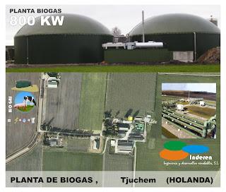 planta de biogas BODIGESTORES tjuchem ludan holanda 800 KW INDEREN biodigestores ENERGIAS RENOVABLES VALENCIA