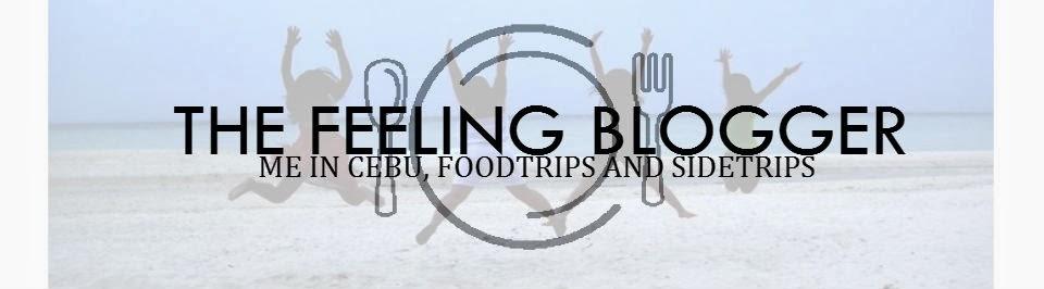 """""""The Feeling Blogger"""""""