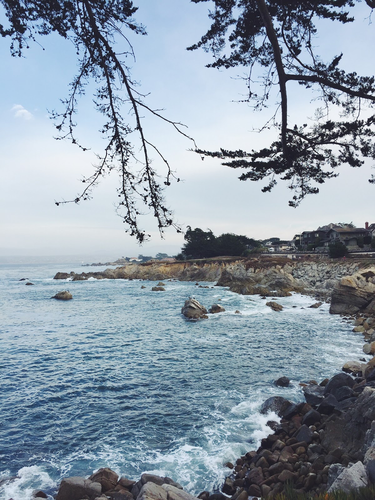 Lovers point Monterey, Monterey scenic outlook
