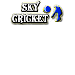 Play Online cricket games, read cricket news and watch cricket videos