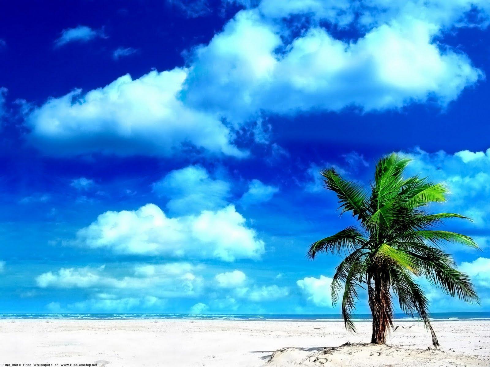 HD wallpaper Seashore