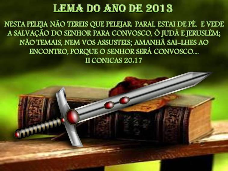 LEMA 2013