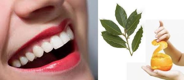 Blanquear los dientes con hojas de laurel