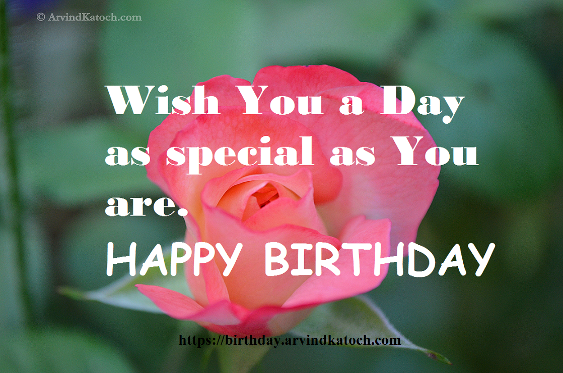 Happy Birthday Messages Cards Birthday Card Special Happy