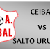 """Formativas - Liguilla 2011 - """"Pre-Final"""" (suspendida) de Liguilla Sub 15"""
