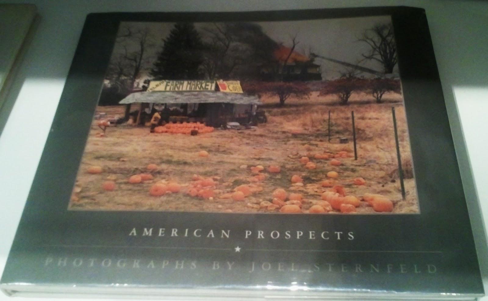 Joel Sternfeld American Prospects Libro American Prospects de Joel