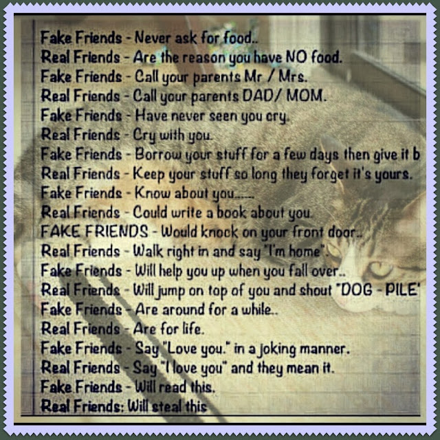 quotes about fake friends - photo #12