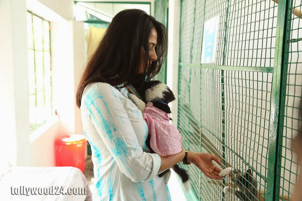 Anushka with Puppy at Blue Cross Pet Carnival Press meet-HQ-Photo-3