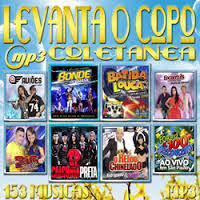 Baixar CD Coletanea Levanta O Copo Download