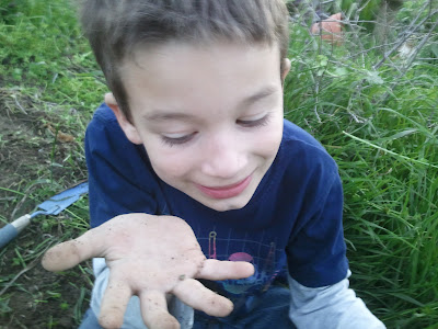 Gardening with Kids: Planting Seeds of Science