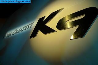 Kia k9 car 2013 logo - صور شعار سيارة كيا k9 2013