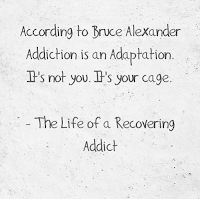Quote Addiction is an adaptation