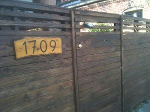 Cedar Fence