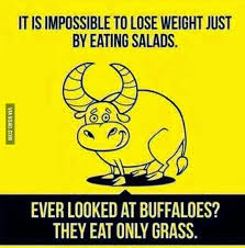 impossible-to-lose-weight-just-by-eating-salads