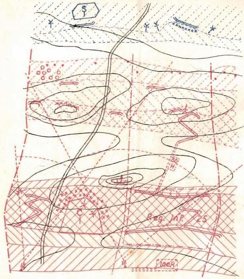 Figura 17. Ejemplo de un esquema de organización del terreno