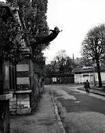 el salto al vacio de Yves Klein
