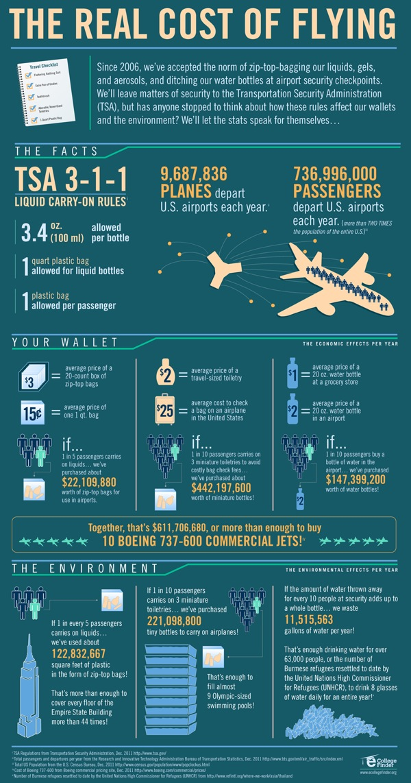 Infographic The Real Cost Of Flying